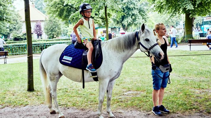 img: Horse Riding