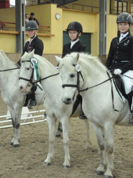 img: Egzamin na Odznaki Jeździeckie we Wrocławiu