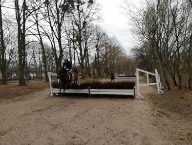 img: Konie i jeźdźcy trenują