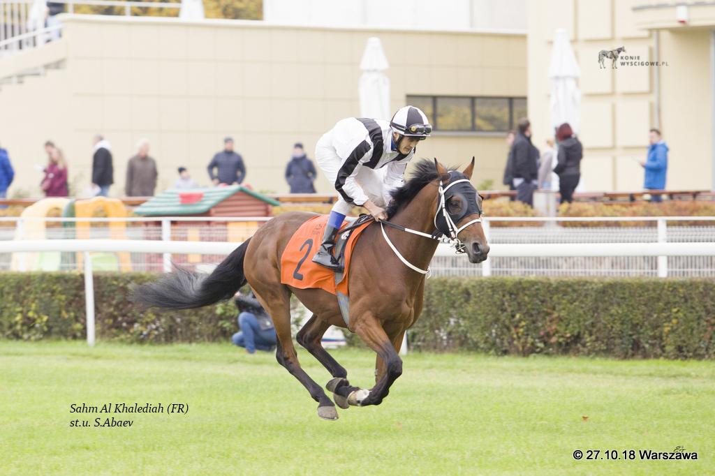 img: Efektowne zwycięstwo Sahma Al Khalediah