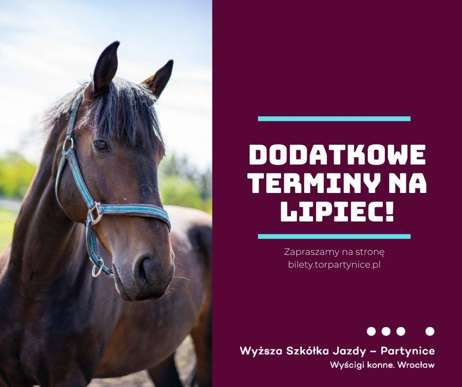 img: Dodatkowe terminy zajęć z jazdy konnej