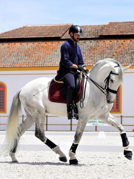img: Szkolenie Working Equitation z Goncalo Soares i Davidem Oliveira