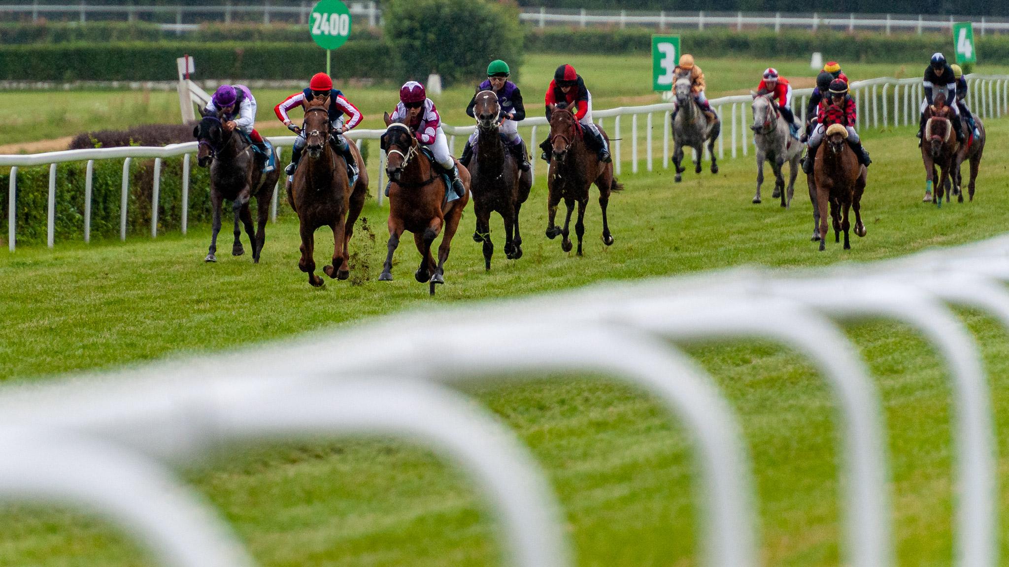img: Wyścig zwycięzców